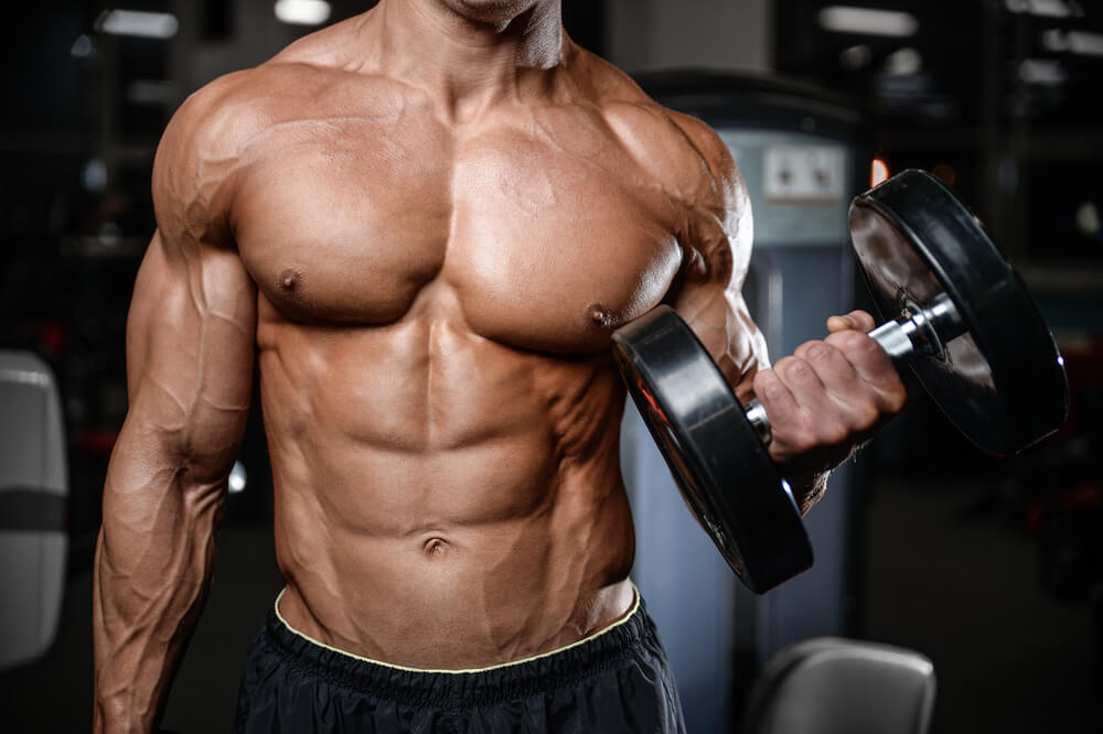 best diet for muscle gains